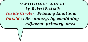 'EMOTIONAL WHEEL'  